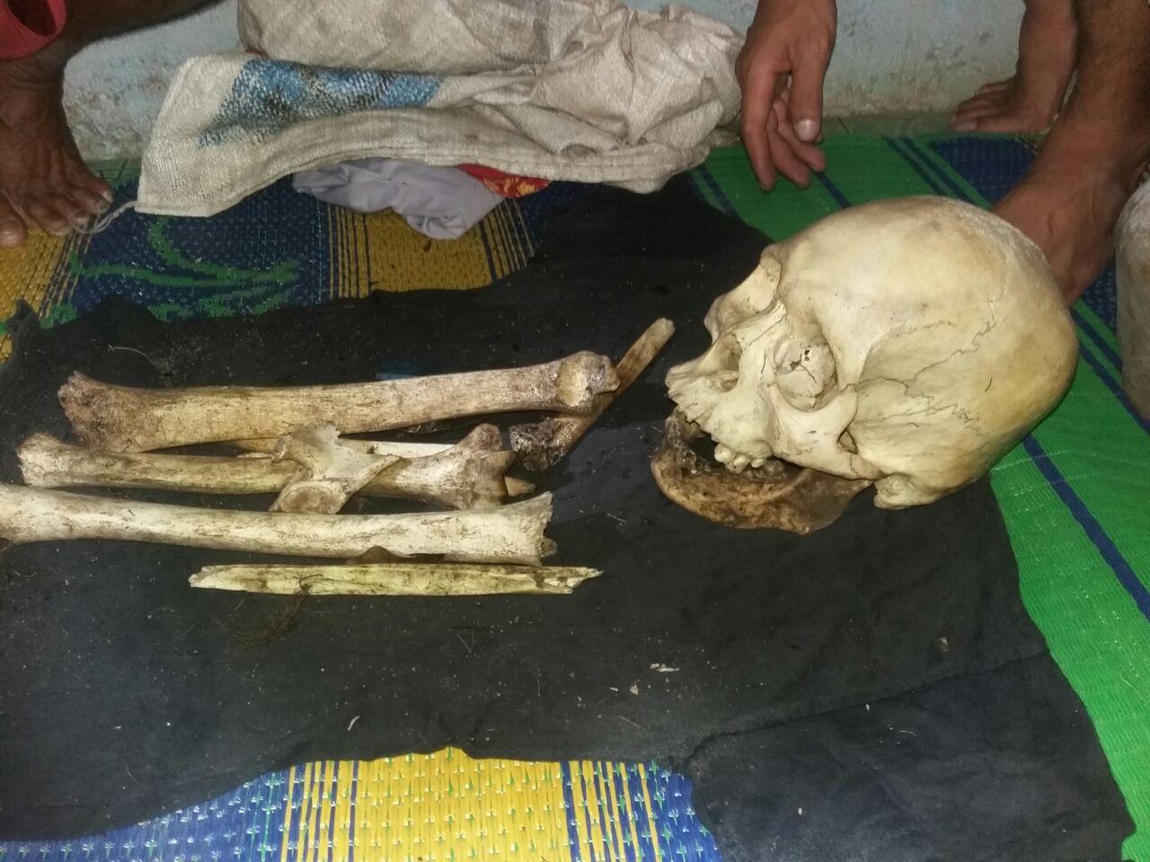 Tengkorak Manusia Ditemukan di Hutan Kecamatan Menjalin