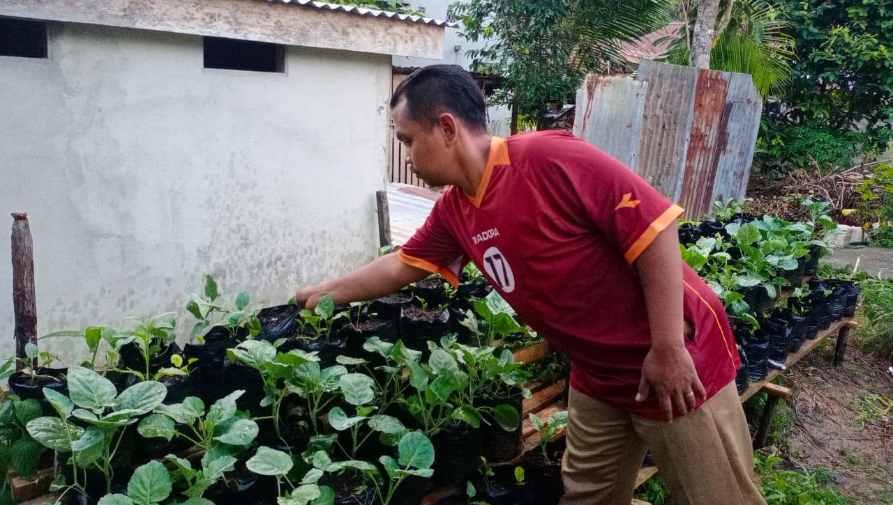 Ditengah Pandemi, Depi Manfaatkan Pekarangan Rumah untuk Berkebun