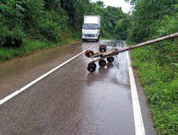 Tiang Listrik PLN Tumbang di Mungguk Ransa, Tiga Kecamatan Padam Total di Sekadau