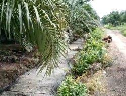 Warga Desa Kuala Mandor A Kubu Raya Keluhkan Air Tercemar Akibat Kebocoran Limbah